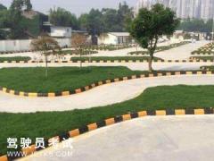 南京和诚驾校-和诚驾校