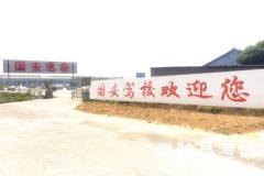 北京国安驾校-国安驾校