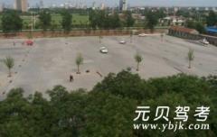 淄博维科驾校-维科驾校
