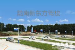 陇南新东方驾校-新东方驾校
