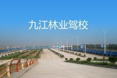 九江林業駕校