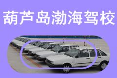 葫蘆島渤海駕校